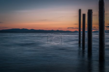 Point Roberts pilings and silky