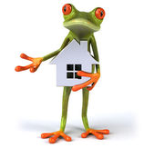 Fun frog with model of the house
