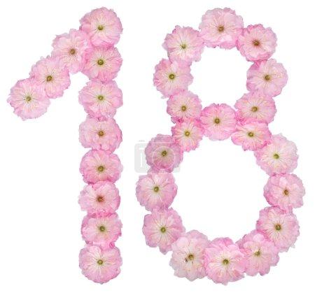 Photo pour Nombreux 18, dix-huit, à partir de fleurs roses naturelles d'amandier, isolé sur fond blanc - image libre de droit