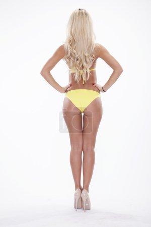 Sexy blonde woman wearing pink swimwear posing on white backgrou