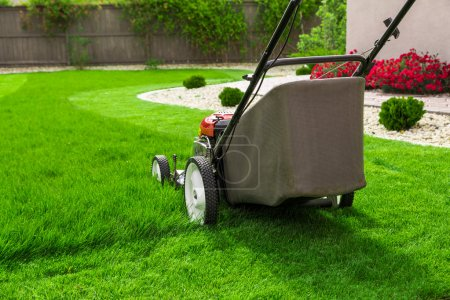 Small lawn mower
