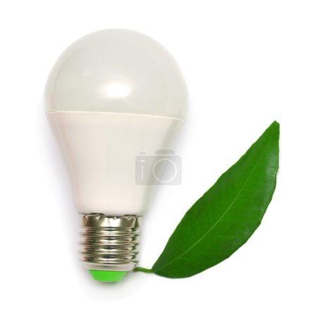 Photo pour Lampe LED et feuille isolée sur fond blanc - image libre de droit