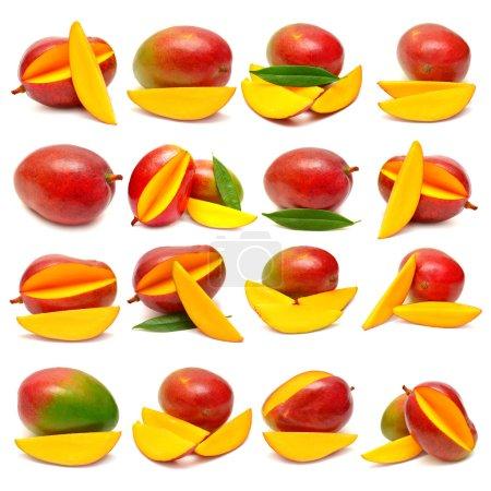 Photo pour Collection de mangues aux feuilles et tranches isolées sur fond blanc - image libre de droit