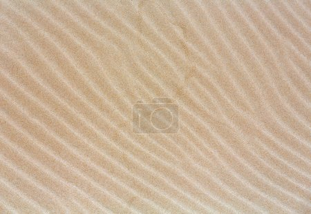 Sand background with barely visible waves.