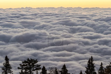 Photo for Beautiful peaceful view of the sunrise above the clouds on top of The Sandia mountains in New Mexico - Royalty Free Image