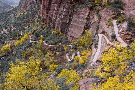 Photo pour Sentier de retour dans la randonnée Angels Landing au parc national de Zion avec des couleurs automnales - image libre de droit