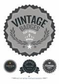 Sada retro vintage odznaky a štítky