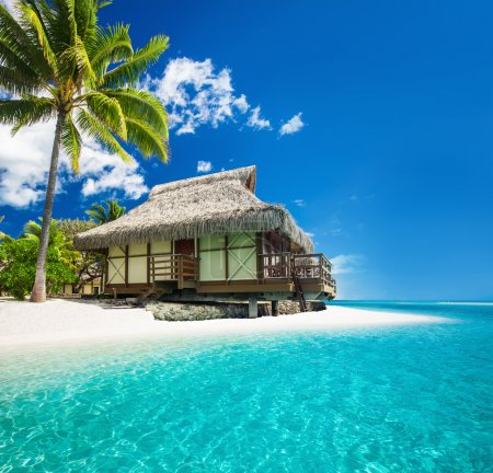 Tropical bungallow on the amazing beach with palm tree