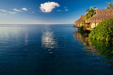 Villas in a tropical resort