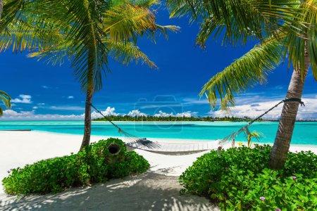 Empty hammock between palm trees on beach