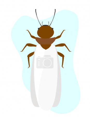 Termite Insect with Wings