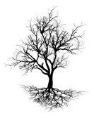 Dead Tree Black Shape