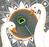 Swan Birds with Peacock Feather Background Vector