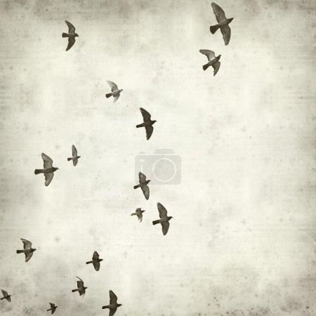 Photo pour Texture vieux fond de papier avec le vol des pigeons - image libre de droit