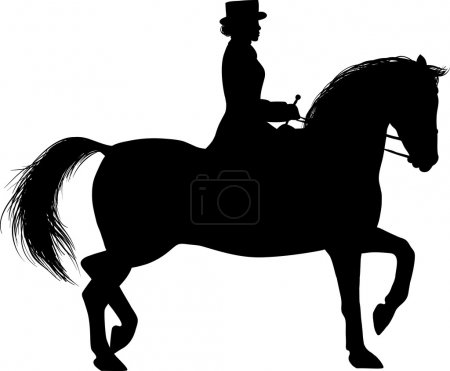 Silhouette of a Woman on horseback