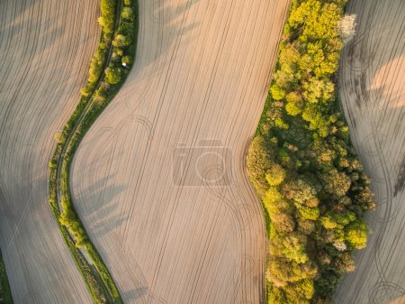 Photo for Farmland from above - aerial image of a lush green filed - Royalty Free Image