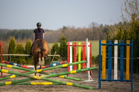 Woman show jumping with horse