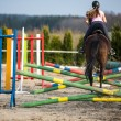 Young woman show jumping with horse...