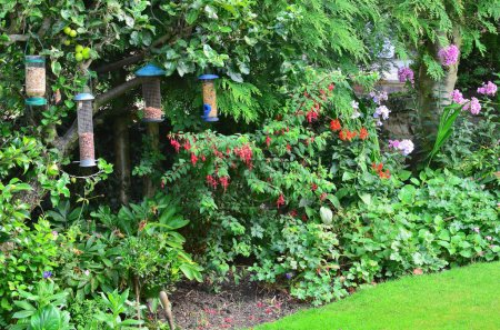 Bird feeders in a typical english country garden