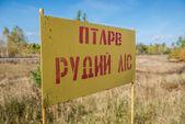 Tschernobyl-zone