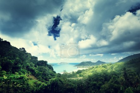 Photo pour Jungle des Seychelles île - image libre de droit
