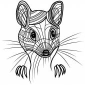 Rat or mouse head