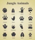 Vector illustration of set of jungle animal tracks