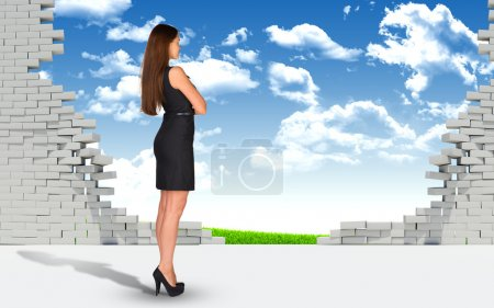Businesswoman and ruined brick wall with nature landscape