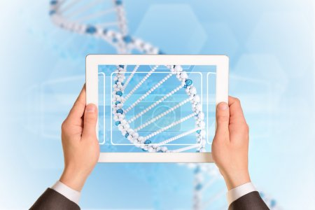 Photo for Man hands using tablet pc. Image of DNA helix on tablet screen - Royalty Free Image