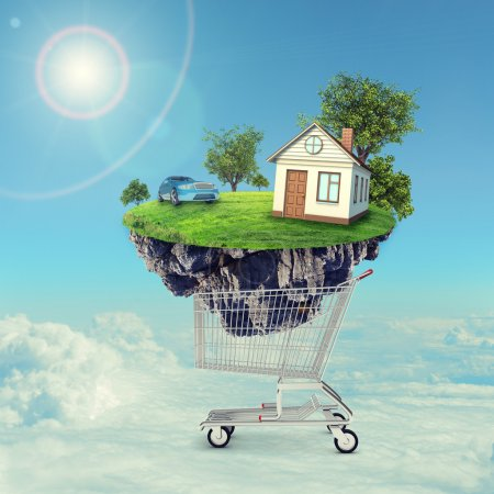 House and car on island in shopping cart