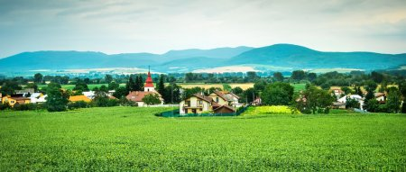 picturesque panorama of countryside landscape