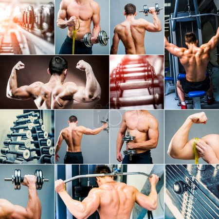 collage of photos of bodybuilding and weightlifting