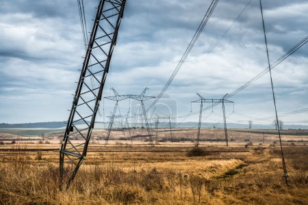 Landscape of field with power lines