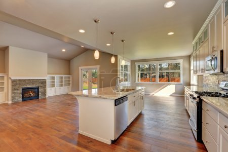 Outlook at the luxury modern kitchen in a brand new house.