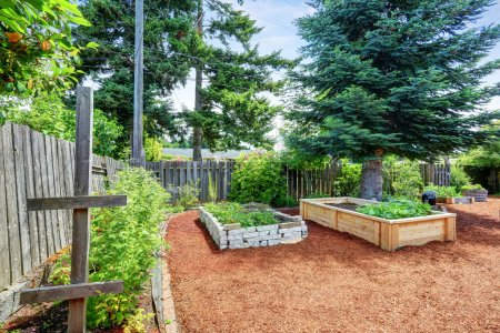 Small garden beds at the backyard. Northwest, USA...