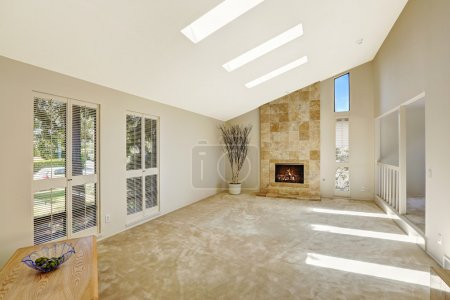 Beautitful living room with vaulted ceiling and skylights. Empty