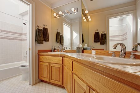 Bathroom vanity cabinet with two sinks and mirror