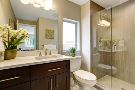 Photo pour Belle salle de bains avec douche en verre et de petites plantes comme décor. - image libre de droit