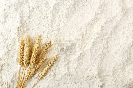 Photo for Wheat ears on flour surface, full frame - Royalty Free Image