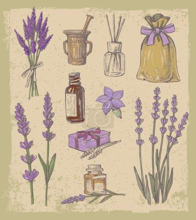 Illustration for Vector hand drawn lavender set on vintage background - Royalty Free Image