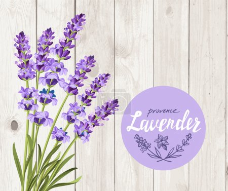 Illustration for Vector bunch of lavender on wood background - Royalty Free Image