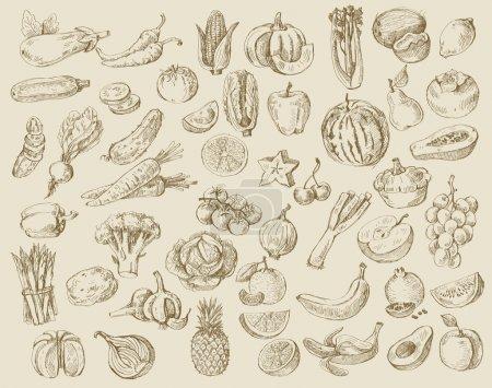 Illustration pour Jeu vectoriel de fruits et légumes dessinés à la main - image libre de droit
