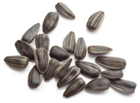 Photo pour Graines de tournesol isolées sur fond blanc - image libre de droit