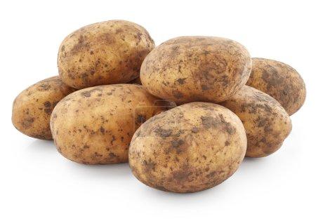 Raw potatoes on white
