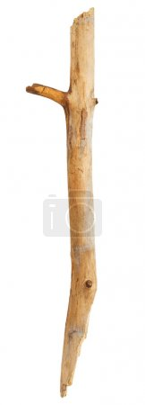 Wooden stick on white