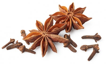 Star anise and cloves on white