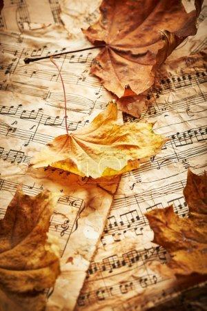 Photo pour Feuilles d'automne sèches sur feuilles de musique vintage - image libre de droit