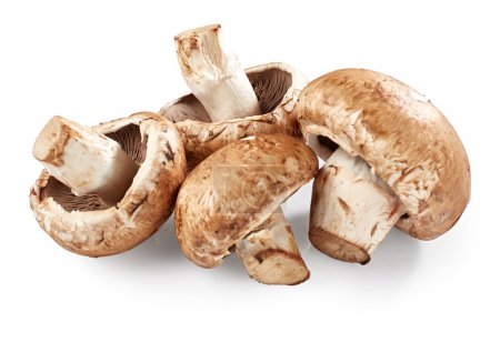 Champignon mushrooms on white background