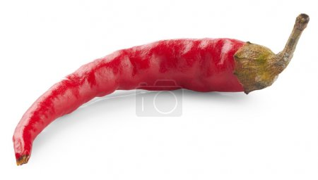 Chilli pepper isolated on white background