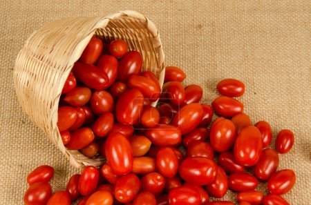Photo for Cherry tomatoes on brownish sack background - Royalty Free Image